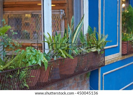 Detail of a wooden window with flower pot and tree - rendering                - stock photo