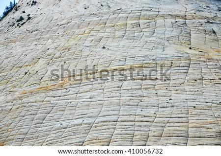 Detail of Checkboard Mesa, Zion National Park. Utah, USA - stock photo