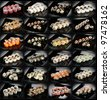 24 different types of maki sushi on black plate - stock photo