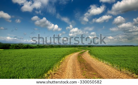 dirt road passing through a green wheat field - stock photo