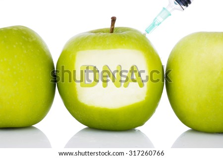 """""""DNA"""" text on green apple with syringe injected on it isolated white background - concept for genetically modified foods for diet,future health, science, chemistry, medicine and people. - stock photo"""