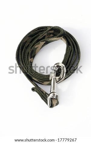 dog-leash - stock photo