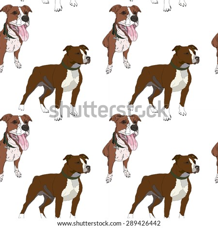 dog pattern American Staffordshire Terrier - stock photo