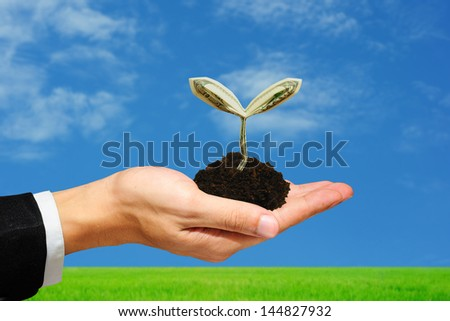 100 dollar sprout on hand with green field blue sky background - stock photo