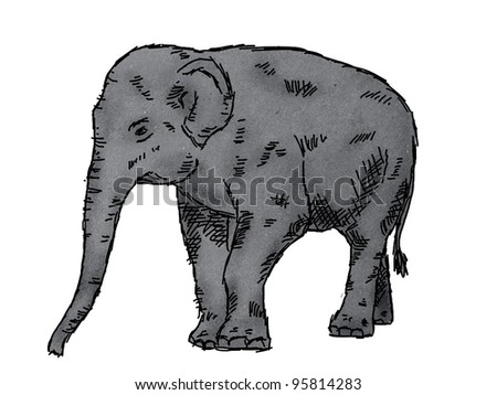 Elephant Drawing Outline Drawing of Elephant on Paper