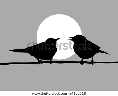 drawing two birds - stock photo