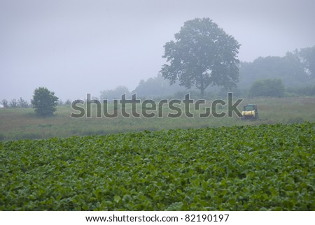 """Early Morning Farm""   A foggy view of a farm in rural Central New Jersey. - stock photo"
