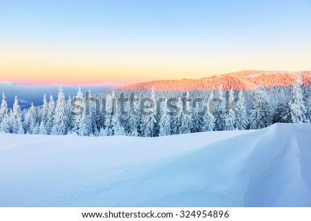 Early morning sunbeam shelter sky and forest covered with snow, drawing the way for adventurous extreme traveler - stock photo