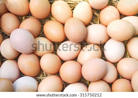 eggs on eggs background - stock photo