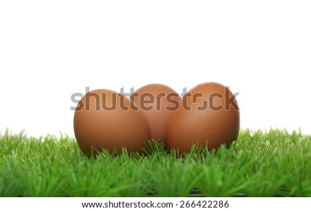 3 eggs on green grass - stock photo