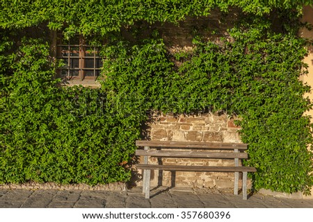 Outstanding Single Wooden Bench Under Trees Brick Stock Photo   With Great Empty Seat And Window On A Wall Covered With Ivy In Garden With Captivating How To Keep Cats Away From Your Garden Also Fishing Garden Gnomes In Addition Gardener Jobs Uk And Hilton Garden Inn Glasgow Phone Number As Well As Pebble Stone Garden Ideas Additionally Garden Slides Argos From Shutterstockcom With   Great Single Wooden Bench Under Trees Brick Stock Photo   With Captivating Empty Seat And Window On A Wall Covered With Ivy In Garden And Outstanding How To Keep Cats Away From Your Garden Also Fishing Garden Gnomes In Addition Gardener Jobs Uk From Shutterstockcom