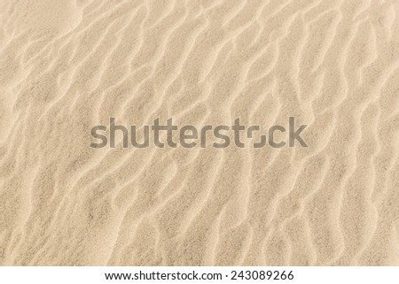 ��¢exture of the sand dunes. Sunny day. - stock photo