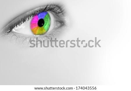 eye color profile                           - stock photo
