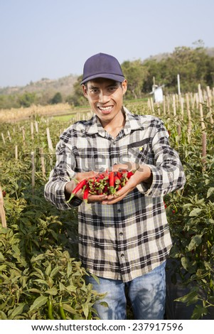 Farmer with red organic chili on hand - stock photo