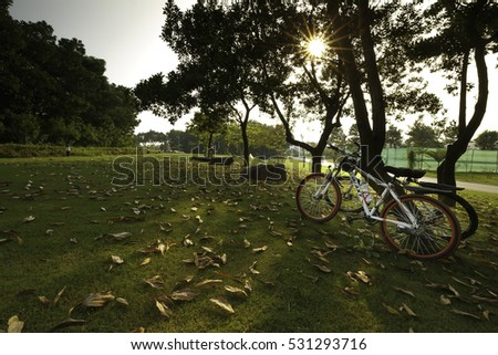 Flamingo Dai Lai, Vinh Phuc Province, Vietnam - October 11, 2016 : two bicycle at sunset on the fallen leaves background in the park at Flamingo Dai Lai Resort Vinh Phuc province , Vietnam