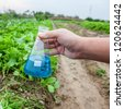 flask with blue solution hold by hand in a lettuce garden - stock photo