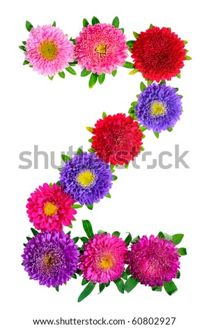 floral alphabet isolated on white background. letter Z