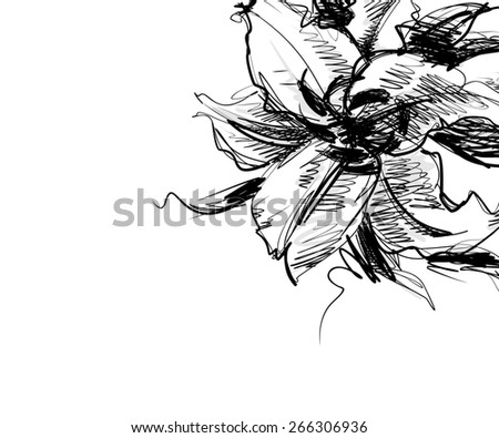 Flower background for design, - stock photo