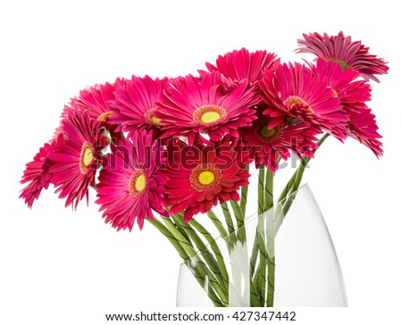 Flower gerbera bouquet isolated on white background - stock photo