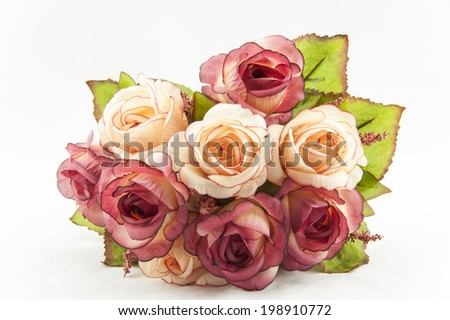 flower on white background,rose - stock photo