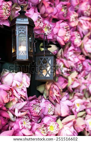 Flower wall - gorgeous floral composition of  pink lotus and  2 black vintage lanterns.    - stock photo