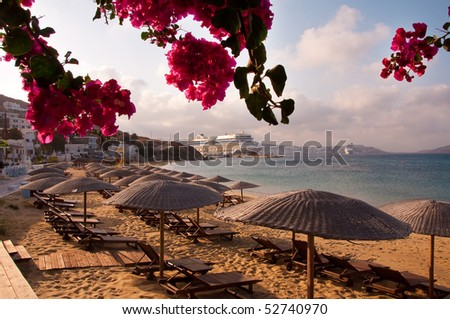 Flowering bougainvillea on the beach against the backdrop of the Mediterranean Sea and the cruise liner. - stock photo