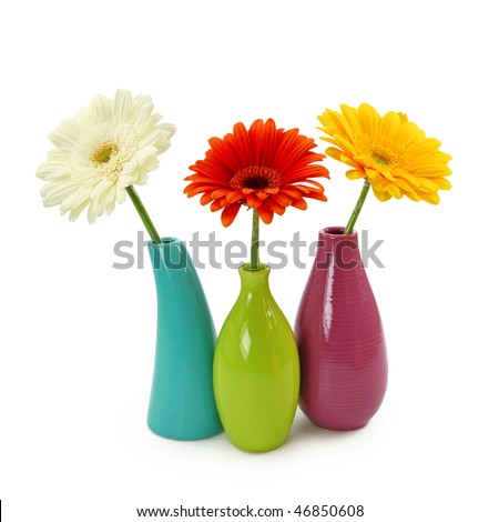 Flowers in vases isolated on white background - stock photo