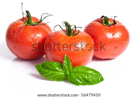 fresh red tomatoes isolated on white background - stock photo