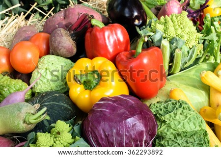 fresh Vegetables piled on the floor