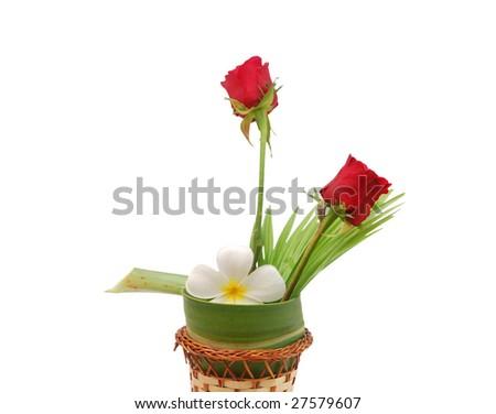 'friend' the Frangipani and rose vase - stock photo