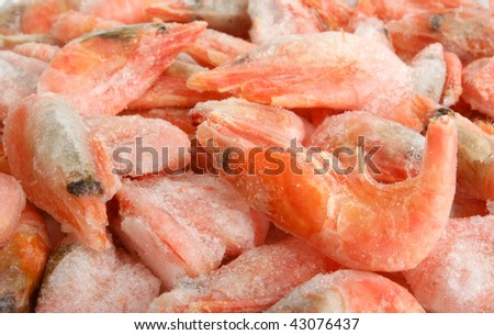 Frozen shrimps background