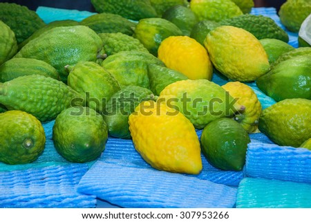Funeral citron fruit - Etrog laid out for sale. The pre-market on Sukkot.  Autumn Jewish holiday in Jerusalem - stock photo