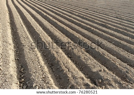 Furrows.
