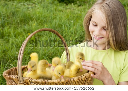 girl holding a basket with goslings - stock photo