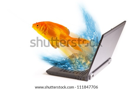 Goldfish Jumping Out Of Computer Screen. - stock photo