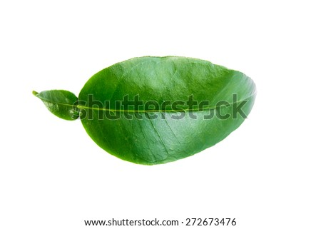 Green leaf Pomelo. Isolated on a white.