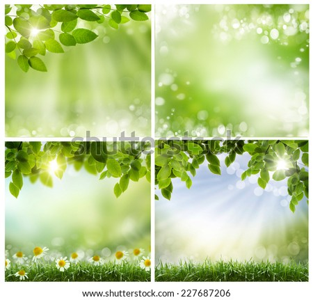 green spring leaves and twigs on light background. Sweep for text, suitable for ecological design, the spring and Easter themes - stock photo