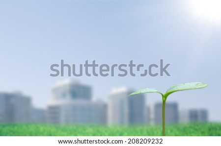 Green sprout and cityscape - stock photo