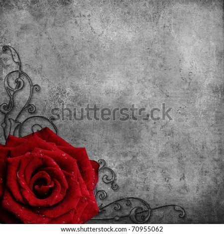 grunge background  with red Rose - stock photo