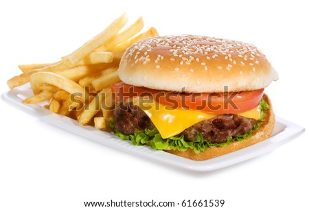 hamburger with vegetables and fries on white background - stock photo