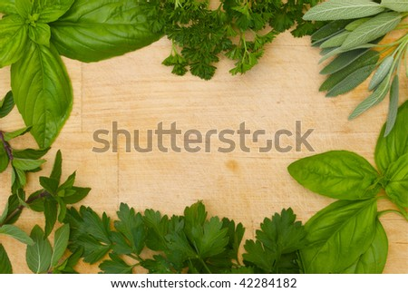 herbs in a border on wooden background - stock photo