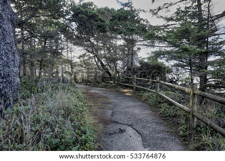 hiking trail in Coos Bay Oregon
