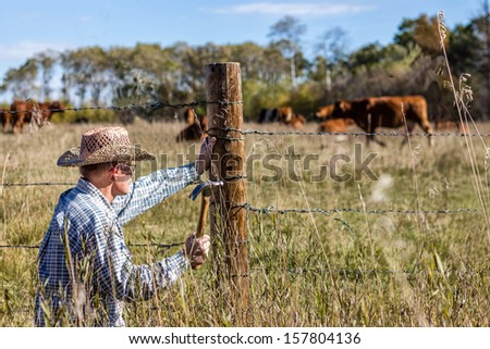 horizontal image in a rural setting of a farmer crouched down to fix his barb wire fence with cows grazing in the background on a warm summer day - stock photo
