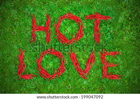 """""""Hot love"""" words shaped group of red chili peppers on a green gr - stock photo"""