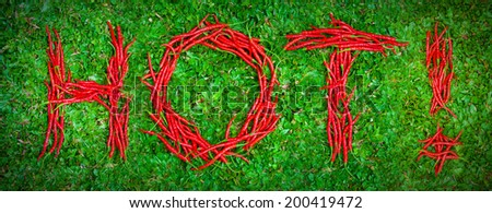 """""""Hot!"""" word shaped group of red chili peppers on the green grass - stock photo"""