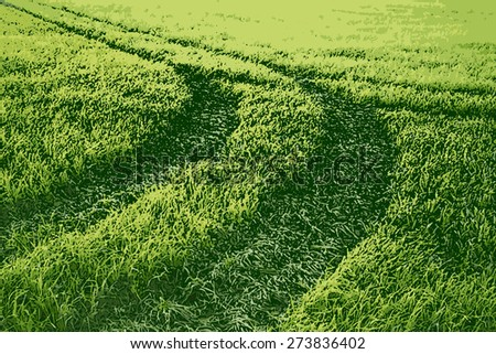 illustration car drove in the midst of green meadows and squeezed grass - stock photo