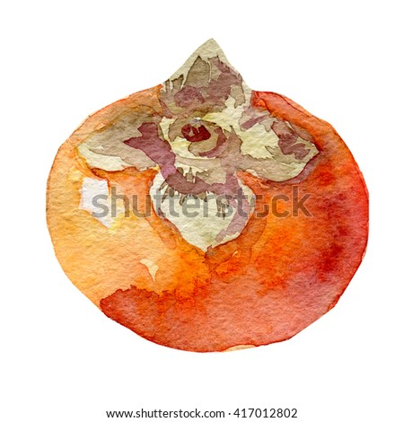 Illustration of fruit persimmon. Hand drawn watercolor on white background. - stock photo