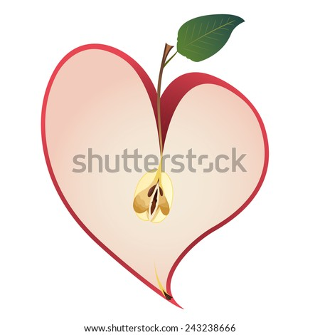 illustration with apple as a heart - stock photo