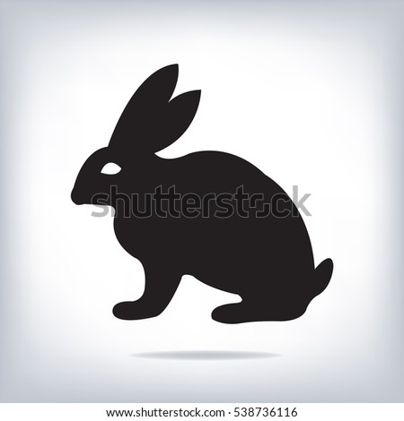 image of an rabbit