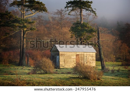 Island Pastureland. Fog creeps in over an island cow pasture during a lovely sunrise in the San Juan Islands of Puget Sound in western Washington state. - stock photo